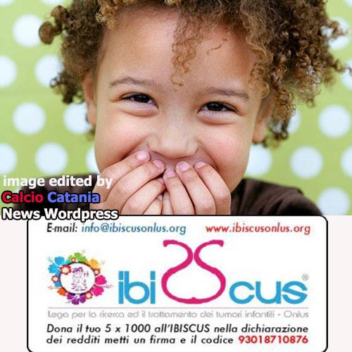 IBISCUS2